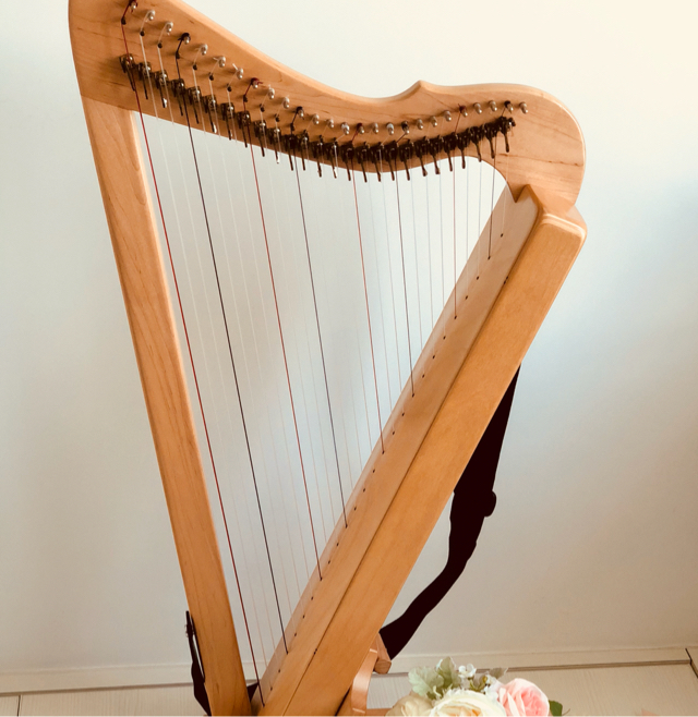 Portable 26 strings Harp Fullicle 小豎琴 image