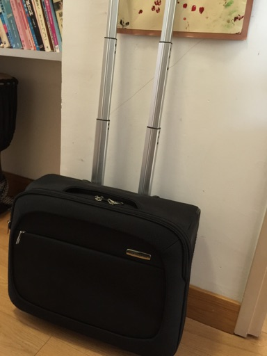 Carry-on suitcase  image